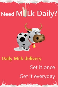 daily milk delivery